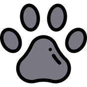 Imagen para la categoría Mascotas sin mecanismo