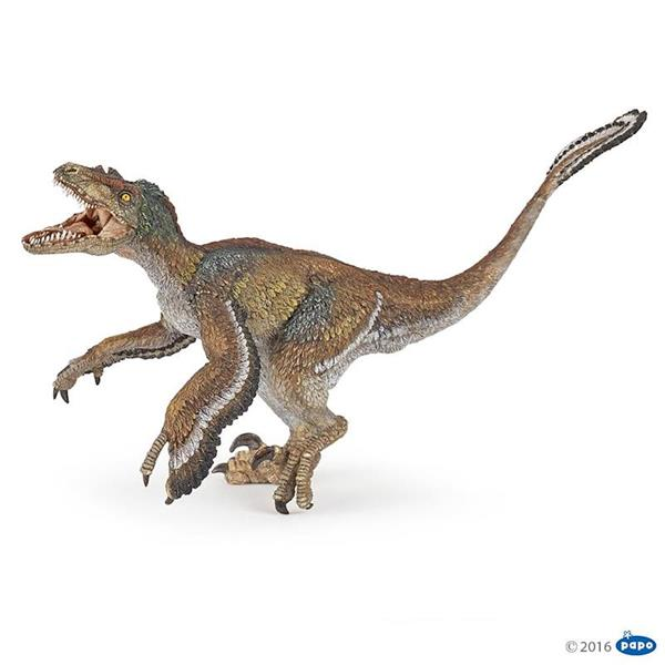 Figura Dinosaurio Velociraptor Con Plumas Papo It is now known that velociraptors had feathers, lending them the appearance of a vicious primordial turkey. figura dinosaurio velociraptor con plumas papo