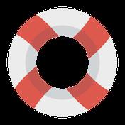 Imagen para la categoría Flotadores y Manguitos