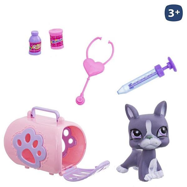 Imagen de Mascota en Jaula con Accesorios