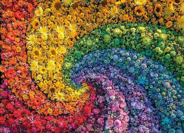 Imagen de Puzzle Adulto Espiral Colores 1000 piezas