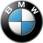 Imagen para la categoría BMW